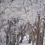 奈良県三峰山