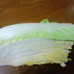 白菜で息子におこられました